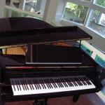 pianos-sep-2008-043