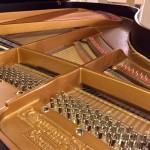 """Grand Piano Grotrian Steinweg 6'1"""""""